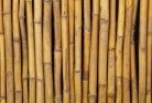 Arnold Bamboo fencing 2