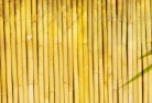 Arnold Bamboo fencing 4